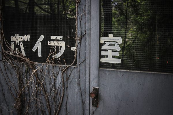 Lost Hostel