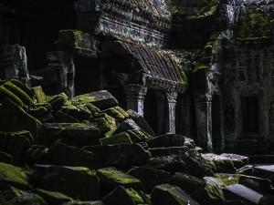 Angkor - Ta Prohm Temple